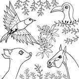 Hand drawn collection of animals, birds and plants illustration Royalty Free Stock Images