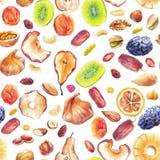 Dry fruit pattern royalty free illustration