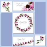 Hand drawn colored  sketch with wreath of echinacea flowers and  bouquet. Set greeting and visit card. Set greeting and visit card. Hand drawn colored  sketch Stock Images