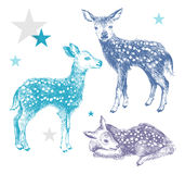 3 hand drawn colorful baby deers. On white background. Baby textile design Royalty Free Stock Images
