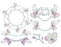Vector Cherry Blossom Design. Dividers, Frames and Wreaths Royalty Free Stock Images
