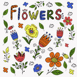 Hand drawn colorful flowers. Royalty Free Stock Photography