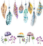 Hand drawn colorful watercolor feathers and mushrooms background Stock Photography
