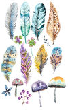 Hand drawn colorful watercolor feathers and mushrooms background Stock Photos