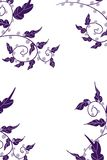 Hand drawn corner borders of vines and leaves in deep purple and lavender berries plus vector illustration