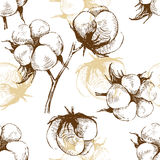 Hand drawn cotton plant seamless Royalty Free Stock Photo