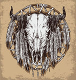Hand drawn cow skull and feathers illustration. Royalty Free Stock Photography