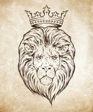 Hand drawn crowned lion head over grunge paper background vector illustration.  Royalty Free Stock Images