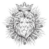 Hand drawn crowned lion head in sun rays isolated over white background   Stock Image
