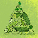 Hand Drawn Cucumber 01 A Stock Photography