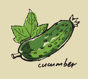 Hand drawn cucumber Royalty Free Stock Photography