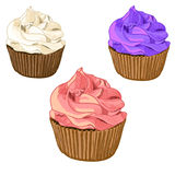 Hand drawn cupcakes isolated on white, sketch style. VECTOR. Berry cakes Royalty Free Stock Image