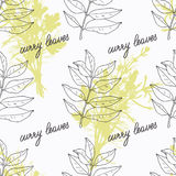Hand drawn curry leaves branch and handwritten Royalty Free Stock Photo