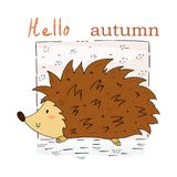 Hand Drawn cute Hedgehog cartoon vector print, vector illustration. Hand Drawn cute Hedgehog cartoon vector print Royalty Free Stock Photos