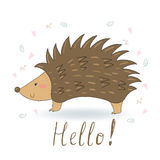 Hand Drawn cute Hedgehog cartoon vector print, vector illustration. Hand Drawn cute Hedgehog cartoon vector print Stock Photography