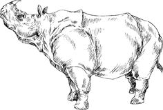 Hand drawn cute rhino Royalty Free Stock Images