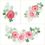 Hand Drawn cute Roses and Leaf composition for your design. Stock Photography