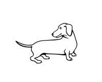 Hand drawn dachshund Stock Photo