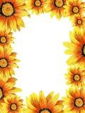 Hand-drawn Dahlia Floral Frame Stock Image