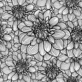 Hand drawn Dahlia flower Royalty Free Stock Photos