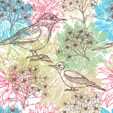 Hand drawn dahlia flowers and birds l seamless pattern Royalty Free Stock Photos