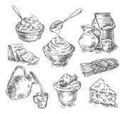 Hand drawn dairy products, milk, cheese. sketch Royalty Free Stock Photo
