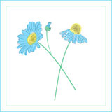 Hand-drawn daisies flowers Royalty Free Stock Image