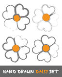 Hand drawn Daisy Set Stock Image