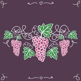 Hand-drawn decorative ripe grapes on the vine. Vector illustration,  on the background. Easy paste to any background Royalty Free Stock Photography