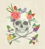 Hand drawn decorative skull with flowers Royalty Free Stock Image