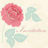 Hand drawn decorative vector floral elements for design. Page decoration element Royalty Free Stock Images