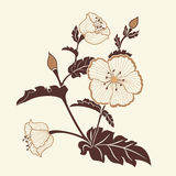 Hand drawn decorative vector floral elements for design. Page decoration element Stock Photography