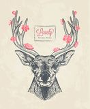 Hand drawn deer head with flowers Stock Images