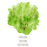 Hand drawn deer head with horns vector illustration Stock Images