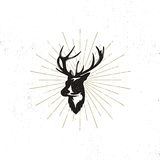Hand drawn deer`s head label. Vintage black vector silhouette of Deer head with antlers, sunbursts isolated on white Stock Images