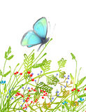 Hand Drawn Delicate Blue Butterfly Sitting on Royalty Free Stock Photos