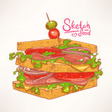 Hand-drawn delicious sandwich Stock Photography