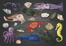 Hand drawn different seafood colored on black background stock illustration