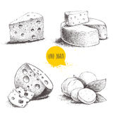 Hand drawn different type of cheese set. Stock Images