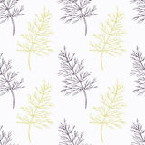 Hand drawn dill branch stylized  Stock Image
