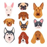 Hand drawn dog breeds set. Funny pet muzzles. vector illustration