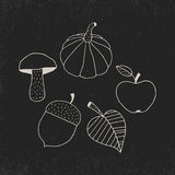 Hand Drawn Doodle Autumn Symbols Stock Images