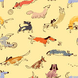 Hand drawn doodle cute dogs. Seamless pattern with plaing pets Stock Images