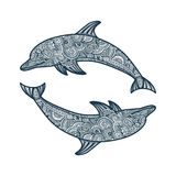 Hand drawn doodle dolphin zen tangle style beautiful doodles. illustration of sea animals.  Stock Images
