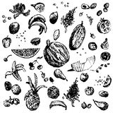 Hand drawn doodle food, fruits and berries. Black objects, white seamless background. Stock Photo