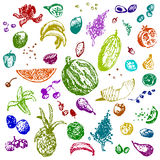 Hand drawn doodle food, fruits and berries. Colored objects, white seamless background. Stock Images