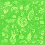 Hand drawn doodle food, fruits and berries. Light green objects, bright green watercolor seamless background. Stock Images