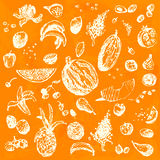 Hand drawn doodle food, fruits and berries. White objects, orange watercolor seamless background. Stock Image