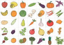Hand drawn doodle Fruits and Vegetables with name. Stock Images