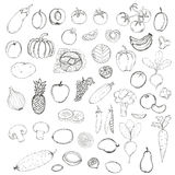 Hand drawn doodle Fruits and Vegetables with name. Stock Image